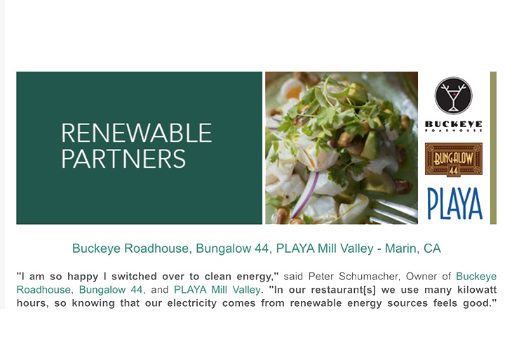 MCE Renewable energy partner
